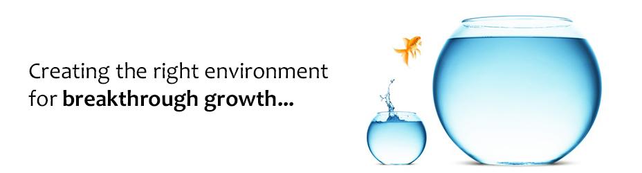 Breakthrough-Growth